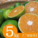 【ふるさと納税】【訳あり】極早生みかん 5kg フルーツ 果物 柑橘系 先行予約 みかん 冬の味覚 送料無料<RK062>