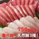 【ふるさと納税】GE003厳選天然マグロ3種セット<魚 刺身
