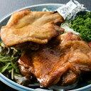 【ふるさと納税】HN052初音のよくばり鶏セット