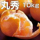 【ふるさと納税】TA−07土佐よさこいポンカン【丸秀10kg...