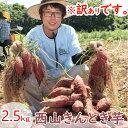 【ふるさと納税】TA004【訳あり】西山きんとき芋(さつまい