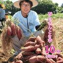【ふるさと納税】【訳あり】西山きんとき芋(さつまいも)10kg 訳あり 傷 野菜 送料無料 <TA0