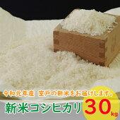 TA04_680_680(コシヒカリ)