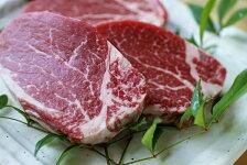 【ふるさと納税】土佐和牛ヒレ肉