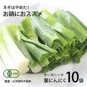 【ふるさと納税】高知県産 冷凍オーガニック葉ニンニク150g×10袋(無農薬、無化学肥料、有機JAS認定)
