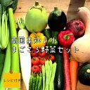 【ふるさと納税】野菜 野菜セット 産地直送 レシピ付き 南国