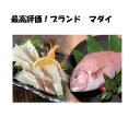 【ふるさと納税】最高峰評価のブランド鯛!「海援鯛」1匹フィーレセット
