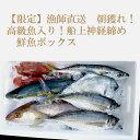 【ふるさと納税】【限定】漁師直送 朝獲れ!高級魚入り!船上神...