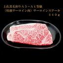 【ふるさと納税】土佐黒毛和牛A5〜A4等級(特撰サーロイン肉...