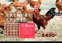 【ふるさと納税】裏庭の土佐ジロー有精卵 25個入りギフトパック