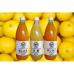 【ふるさと納税】【P-1】オレンジ園の自家製かんきつ果汁飲料(希釈用・1L×3本セット)