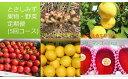 【ふるさと納税】【BE‐1】とさしみず果物・野菜定期便(5回コース)