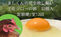 【ふるさと納税】定期便:土佐ジローの卵(12個入り×12回)【AT-7】