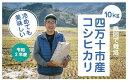 【ふるさと納税】20-548D.【新米】【令和2年産・早期受...