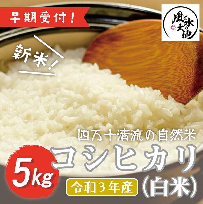 [令和3年産 新米・早期受付]四万十清流の自然米 白米5kg[コシヒカリ]