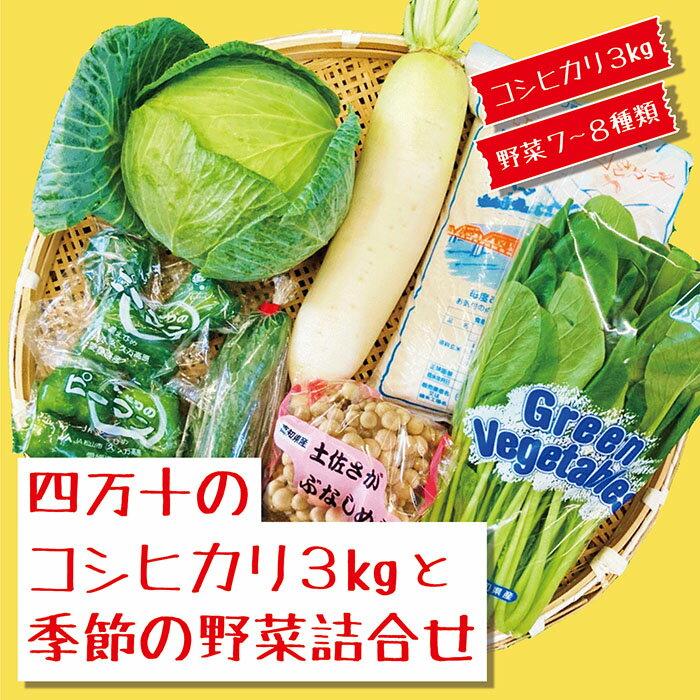 【ふるさと納税】21-786.四万十のコシヒカリ3kgと季節の野菜詰合せ