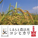 【ふるさと納税】19-604.【定期便3回】しまんと農法米(こしひかり)10kg
