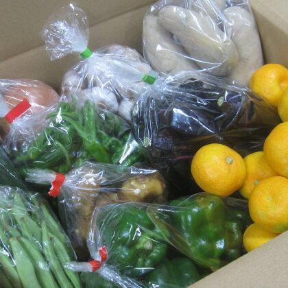 香我美町西川地区の直販所 あぐりのさと 野菜と果実便り