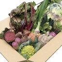 【ふるさと納税】生産者の想いをのせて旬のモノをお届けします! 香南市のお野菜詰合せ
