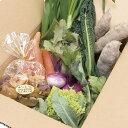 【ふるさと納税】生産者の想いをのせて旬のモノをお届けします! ペットのおやつ+香南市のお野菜詰合せ