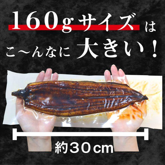 【ふるさと納税】No.3【うなぎ好きのための定期便】大サイズ3尾12カ月(国産ニンニクの芽付き)【鰻/ウナギ/かばやき】ふっくら 美味しい