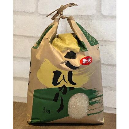 【ふるさと納税】【令和2年産】高知県産コシヒカリ 約3kg 【お米・コシヒカリ】 お届け:2020年8月中旬より順次発送