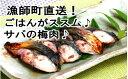 【ふるさと納税】me042 もっちり食感♪米ヶ岡鶏焼き鳥セット(5本×20P)寄付額17,000円