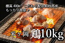 【ふるさと納税】kan003a ドカンと10kg!!もっちり...