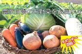 【ふるさと納税】ve001 新鮮!シャキシャキ!旬の野菜詰め合わせ(7〜8種類程度 1回発送)寄付額5,000円