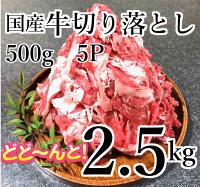 【ふるさと納税】kan202ドカンと2.5kg!国産牛切り落とし2.5kg(500g×5P)寄付額10,000円