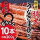 【ふるさと納税】ra005 ドカンと10本!ふんわり、やわらか♪うなぎ蒲焼き10本(200…