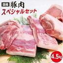 【ふるさと納税】kan081 ドカンと4.5kg!高知県産豚...