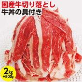 【ふるさと納税】kan172ドカンと2.5kg!国産牛切り落とし2kg&牛丼の具500g