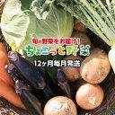 【ふるさと納税】ve009 土佐の新鮮野菜!毎月ちょこっとどうぞ(4〜5品程度×12回)寄付額30,...
