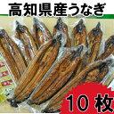 【ふるさと納税】高知県産うなぎの蒲焼き10枚 特製かば焼きの...