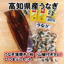 【ふるさと納税】高知県産うなぎの蒲焼き5枚 白焼き5枚 特製...