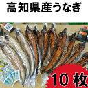 【ふるさと納税】高知県産うなぎの蒲焼き7枚 白焼き3枚 特製...