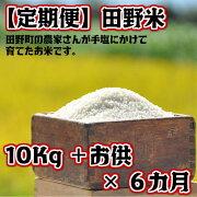 令和元年産田野米10Kg