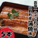 【ふるさと納税】冷凍 高知県田野町産うなぎの蒲焼き5本入り ...