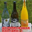 【ふるさと納税】【四国一小さな町の地酒】美丈夫(びじょうふ)...
