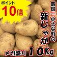 【ふるさと納税】「ポイント10倍」四国一小さな町のじゃがいも。高知県田野町の大野台地で採れた新じゃが 10Kg