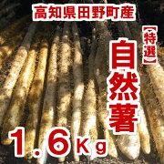 自然薯1.6Kg