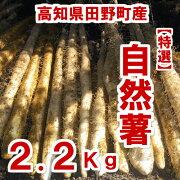 自然薯2.2Kg