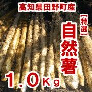 自然薯1.0Kg