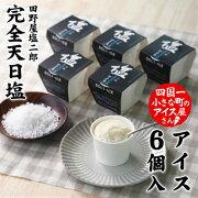01天日塩カップアイス