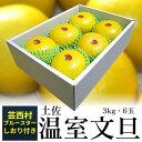 【ふるさと納税】高知産 温室文旦3kg・6玉入芸西村ブルース...