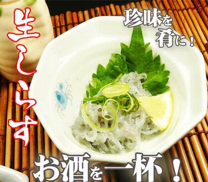 生しらす【ドロメ】(100g×5P)タレ付(イワシ稚魚)【koyofr】