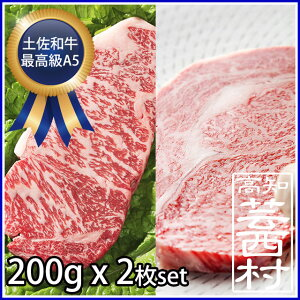 【ふるさと納税】土佐和牛A5特選サーロイン&リブロースステーキ200g×2枚セット牛肉