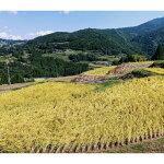 【ふるさと納税】土佐棚田の米『こだわり』玄米30kg