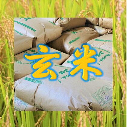 土佐棚田の米『こだわり』玄米 30kg